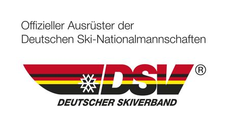 DSV logo with text medi