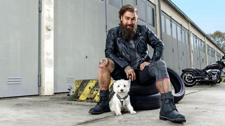 Bild-Genumedi-Biker-Dog