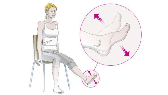 Exercícios para as veias