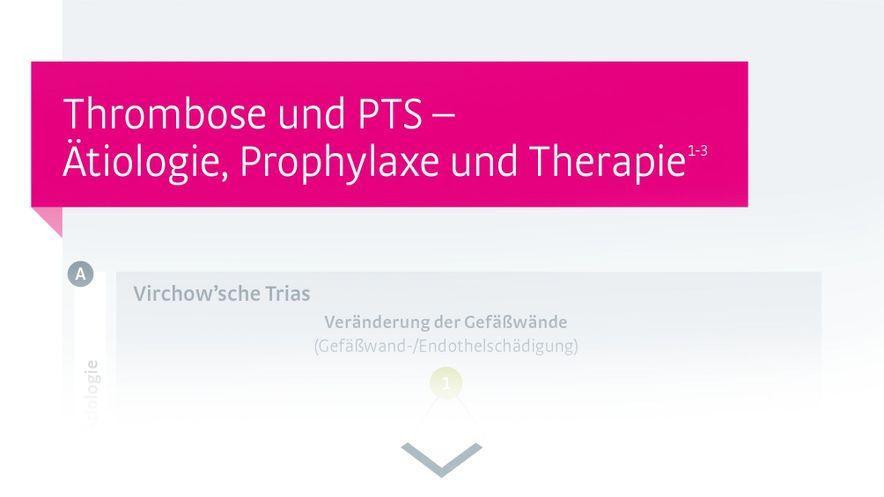 Infografik Behandlungsschema Thrombose