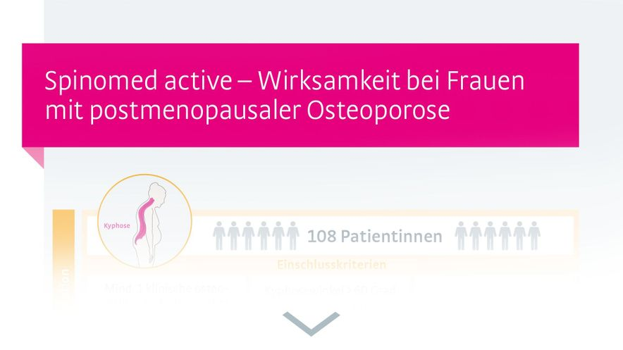 Infografik Osteoporose Pfeifer 2011