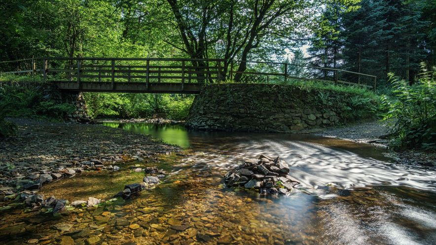 Wermelskirchen Neuenmuehle Bruecke Fluss Natur Wald