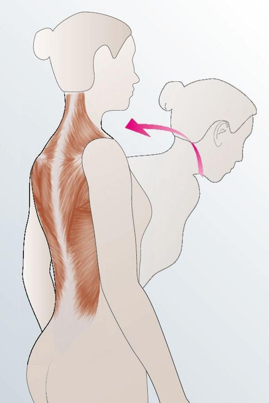 Biofeedback in der Osteoporose-Therapie