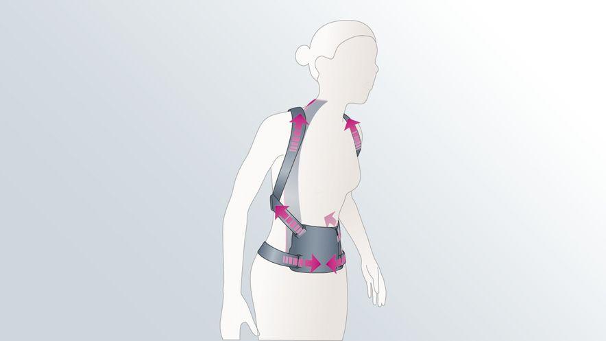 Grafische Abbildung Rückenorthese Spinomed